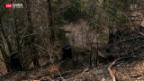 Video «Überraschende Flurbrände» abspielen