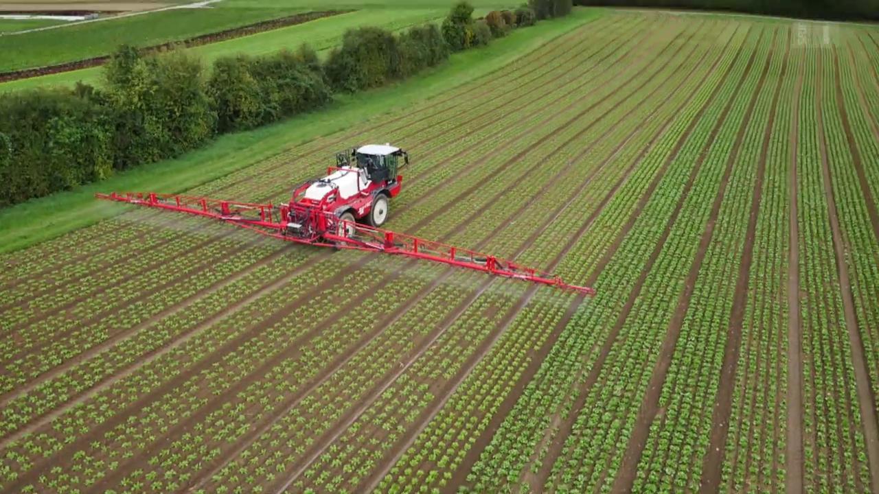 Pestizide in Lebensmitteln